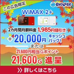 biglobe250x250